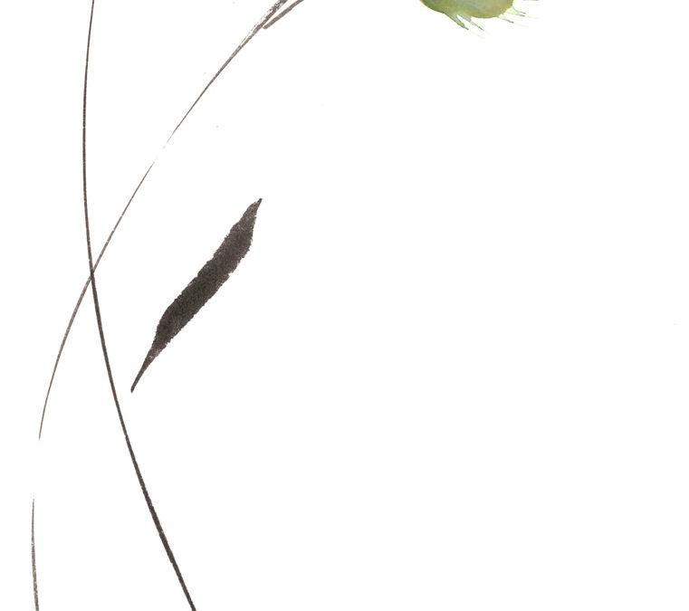 Entrelaçamento entre Flores